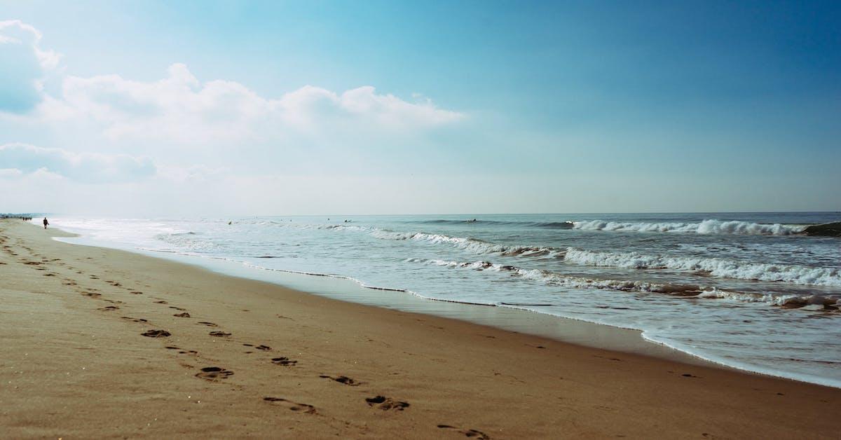 Mon océan et moi